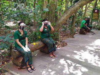 Petugas di obyek wisata Monkey Forest Ubud menggunakan alat pelindung diri. (kanal bali/ ACH)
